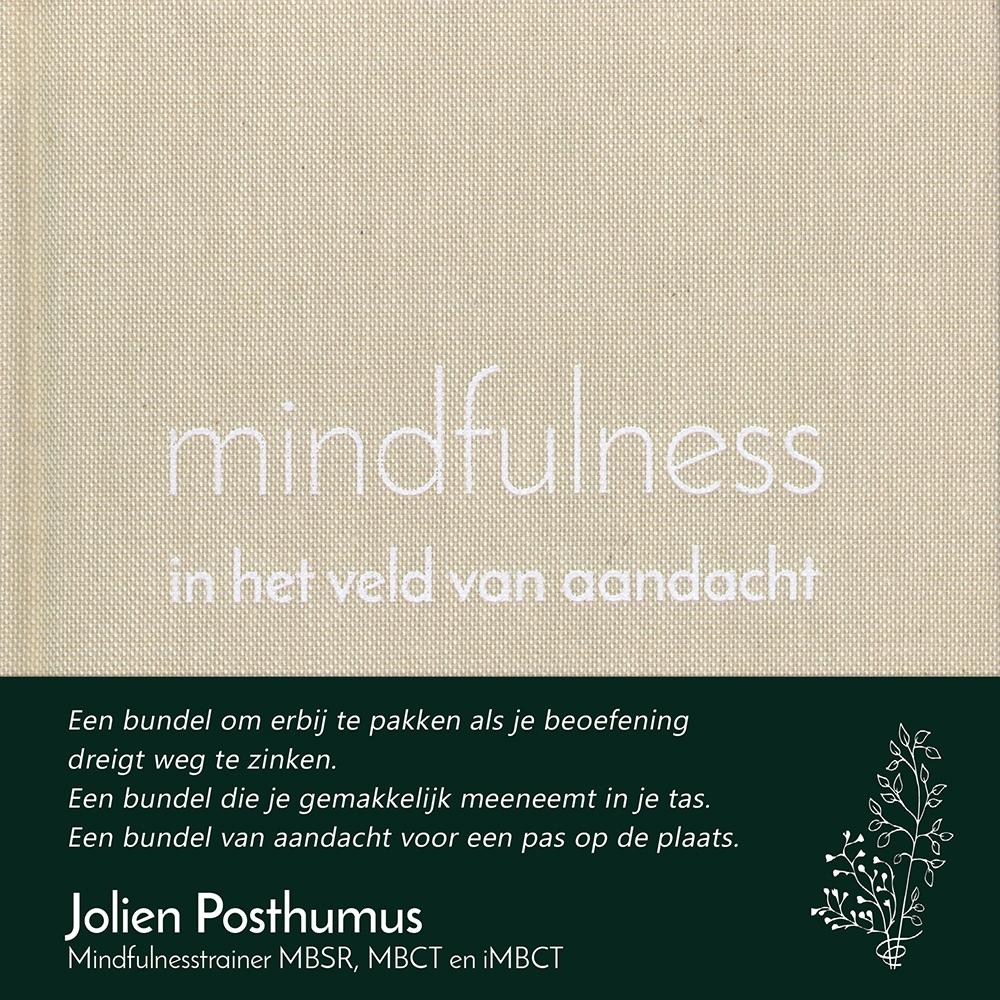 mindfulness in het veld van aandacht – Jolien Posthumus